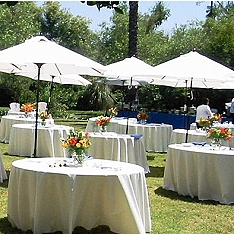 Tables & Umbrellas