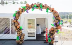 Event Decor Woodinville